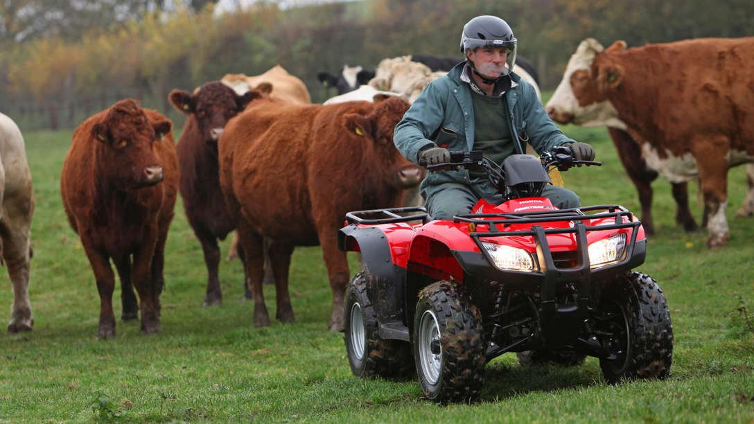 Front Facing Fourtrax 250, Being Used By Model, Field Location.
