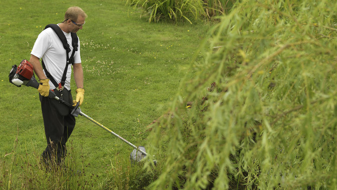 Brushcutter being used by model, garden location.