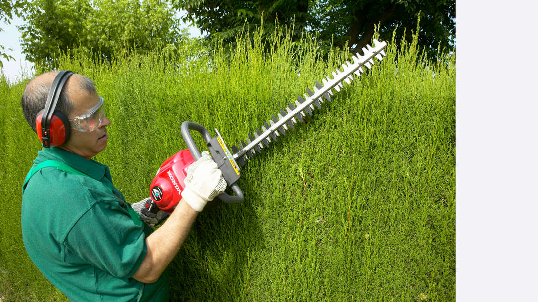 Honda Hedgetrimmers, being used by model, garden location.