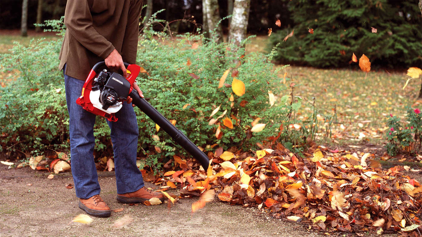 Petrol leaf blowers cordless garden tools honda uk our hand held blower has the benefit of the unrivalled honda gx25 engine to make light work of the numerous jobs it can do in your garden publicscrutiny Gallery