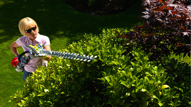 Honda Versatool with hedgetrimmers attachment, being used by model, garden location.