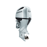 Honda Marine BF250 engine.