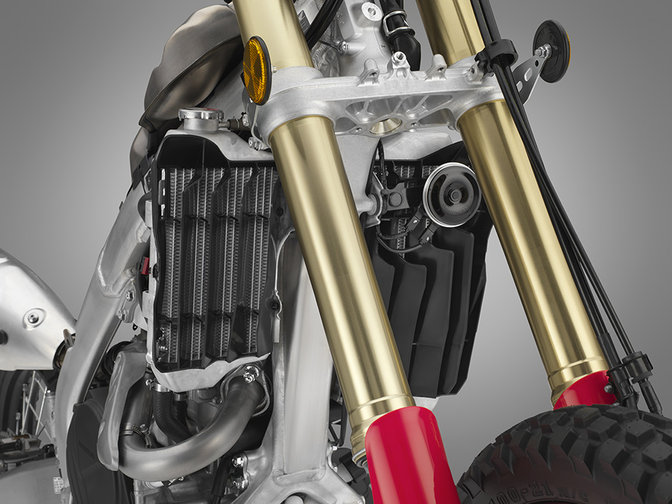 CRF450L, close up of the forks.